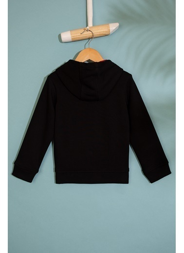 U.S. Polo Assn. Sweatshirt Siyah